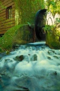 Juniper Springs - Ocala National Forest