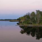 Cedar Islands along Ozello Trail