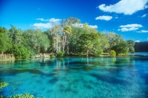Silver Glen Springs: A Scenic Jewel of Ocala National Forest