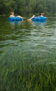 Tubers on the Rainbow River