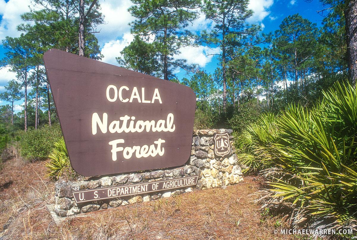 Ordinaire Florida Traveler