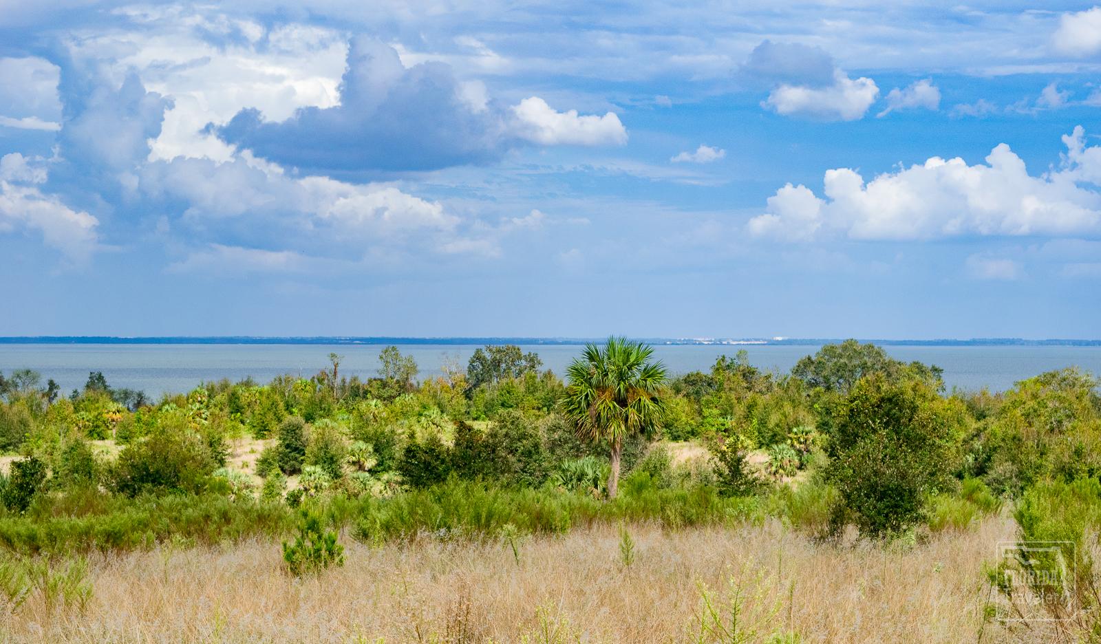 Ferndale Preserve - Ferndale, FL