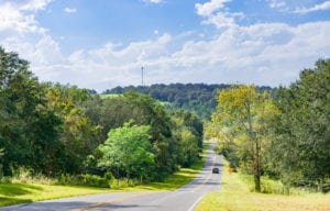Road Trip: Florida's Green Mountain Scenic Byway